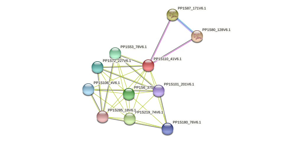 PP1S110_41V6.1 protein (Physcomitrella patens) - STRING interaction network