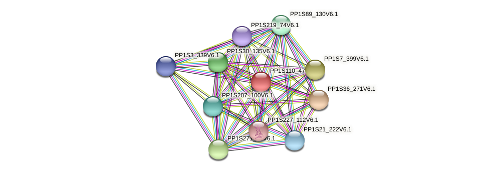PP1S110_47V6.1 protein (Physcomitrella patens) - STRING interaction network