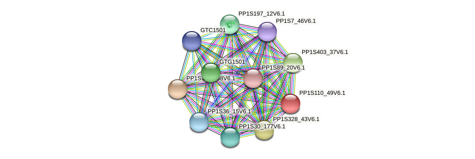 PP1S110_49V6.1 protein (Physcomitrella patens) - STRING interaction network