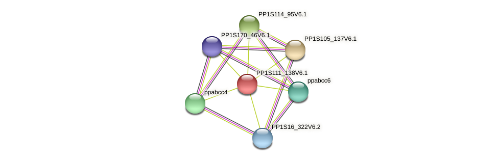 PP1S111_138V6.1 protein (Physcomitrella patens) - STRING interaction network