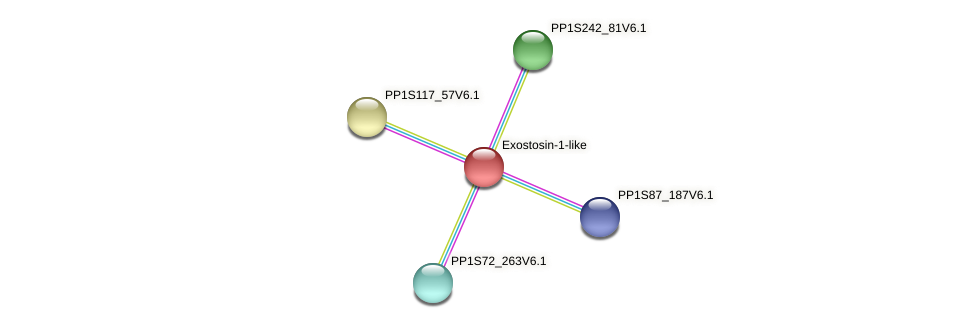 PP1S111_147V6.1 protein (Physcomitrella patens) - STRING interaction network