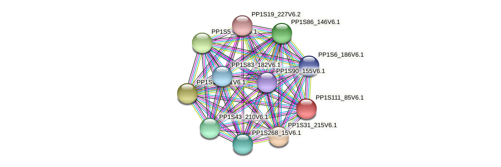 PP1S111_85V6.1 protein (Physcomitrella patens) - STRING interaction network