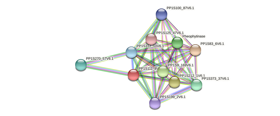 PP1S111_8V6.1 protein (Physcomitrella patens) - STRING interaction network