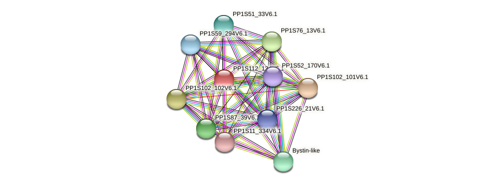 PP1S112_134V6.1 protein (Physcomitrella patens) - STRING interaction network