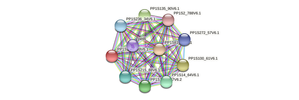 PP1S112_169V6.1 protein (Physcomitrella patens) - STRING interaction network
