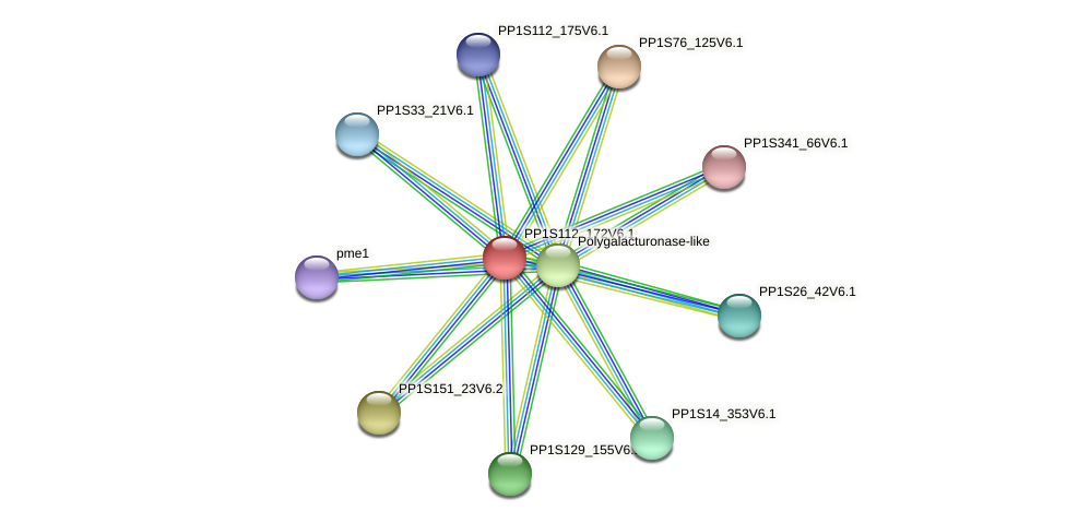 PP1S112_172V6.1 protein (Physcomitrella patens) - STRING interaction network
