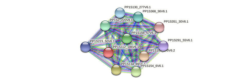PP1S112_186V6.1 protein (Physcomitrella patens) - STRING interaction network