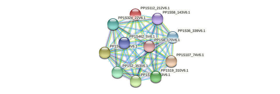 PP1S112_212V6.1 protein (Physcomitrella patens) - STRING interaction network