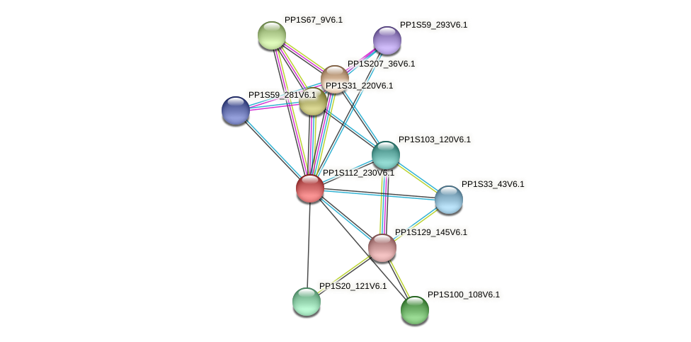 PP1S112_230V6.1 protein (Physcomitrella patens) - STRING interaction network
