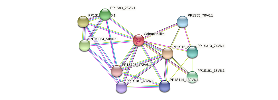 PP1S112_54V6.1 protein (Physcomitrella patens) - STRING interaction network