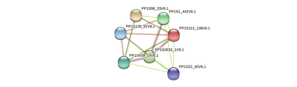 PP1S113_138V6.1 protein (Physcomitrella patens) - STRING interaction network