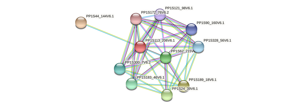 PP1S113_206V6.1 protein (Physcomitrella patens) - STRING interaction network