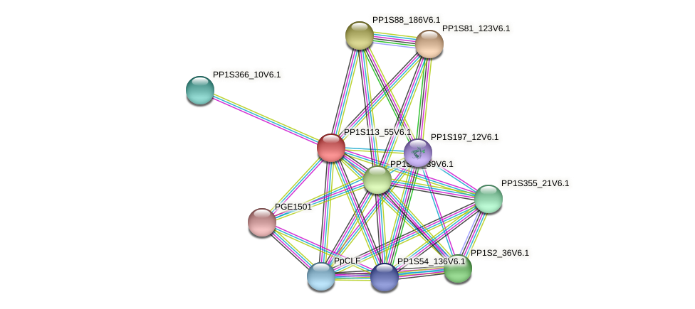 PP1S113_55V6.1 protein (Physcomitrella patens) - STRING interaction network