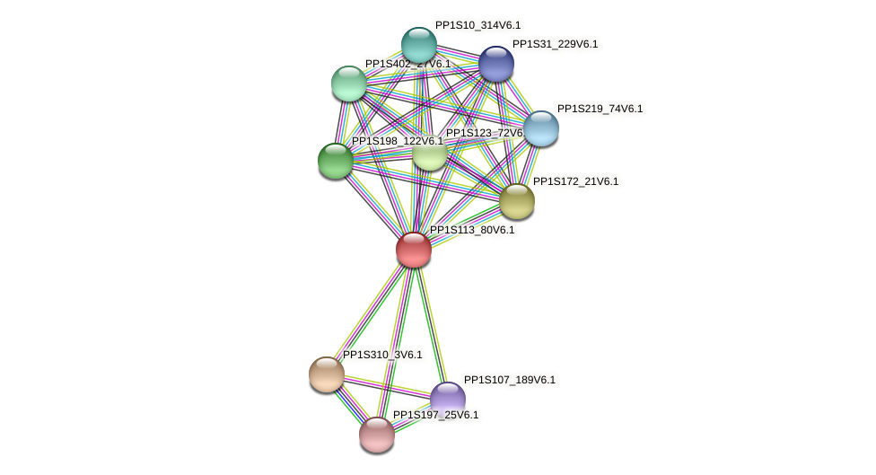PP1S113_80V6.1 protein (Physcomitrella patens) - STRING interaction network