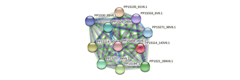 PP1S114_143V6.1 protein (Physcomitrella patens) - STRING interaction network