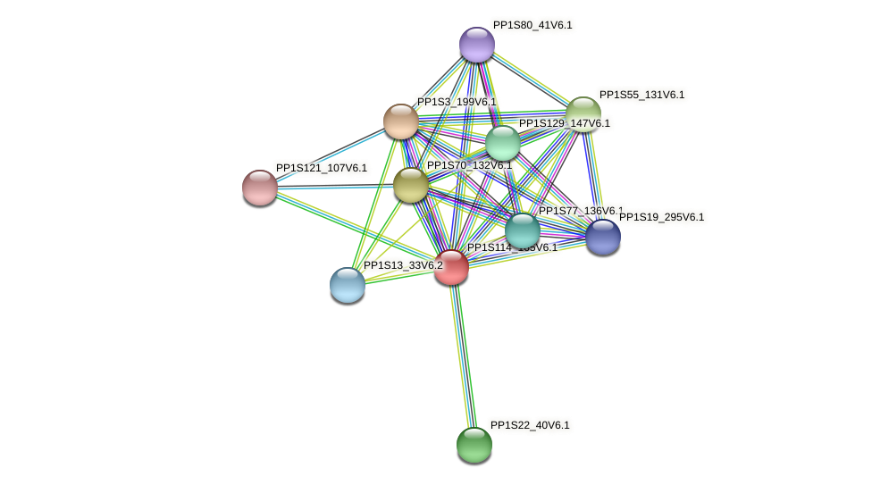 PP1S114_165V6.1 protein (Physcomitrella patens) - STRING interaction network