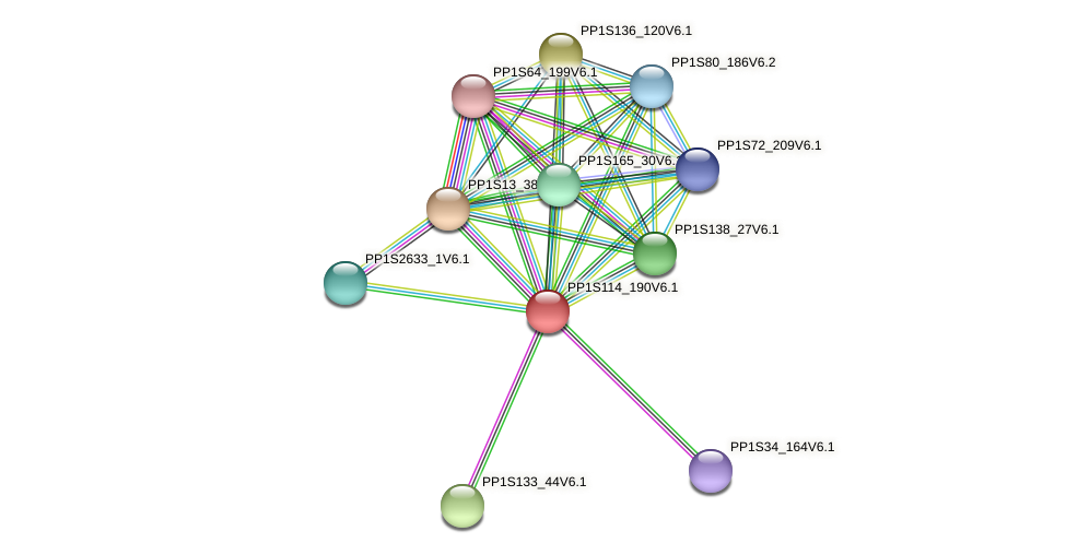 PP1S114_190V6.1 protein (Physcomitrella patens) - STRING interaction network