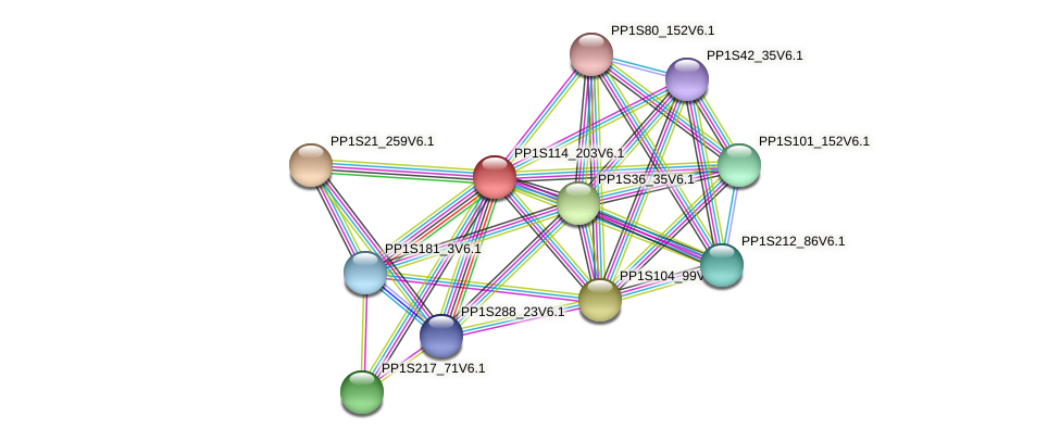 PP1S114_203V6.1 protein (Physcomitrella patens) - STRING interaction network