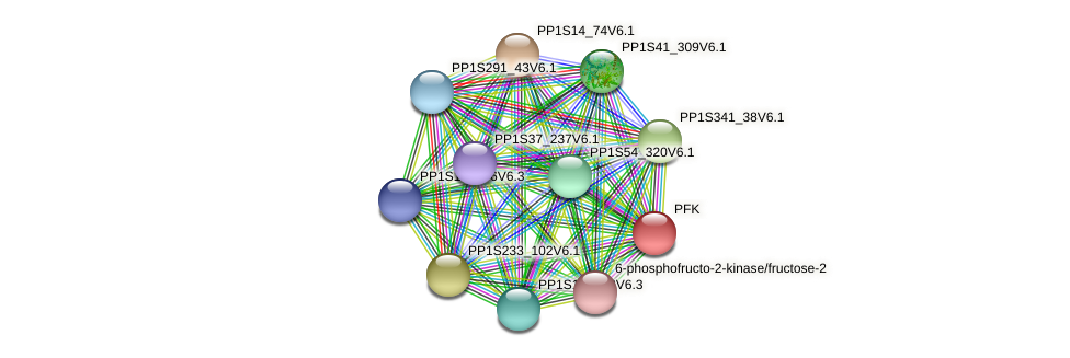 PP1S114_31V6.1 protein (Physcomitrella patens) - STRING interaction network