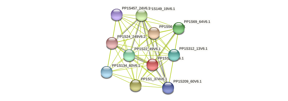 PP1S114_3V6.1 protein (Physcomitrella patens) - STRING interaction network