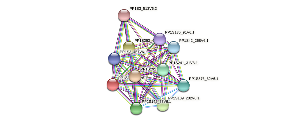 PP1S114_48V6.1 protein (Physcomitrella patens) - STRING interaction network