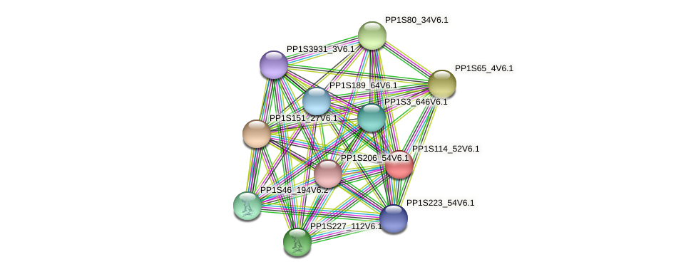 PP1S114_52V6.1 protein (Physcomitrella patens) - STRING interaction network