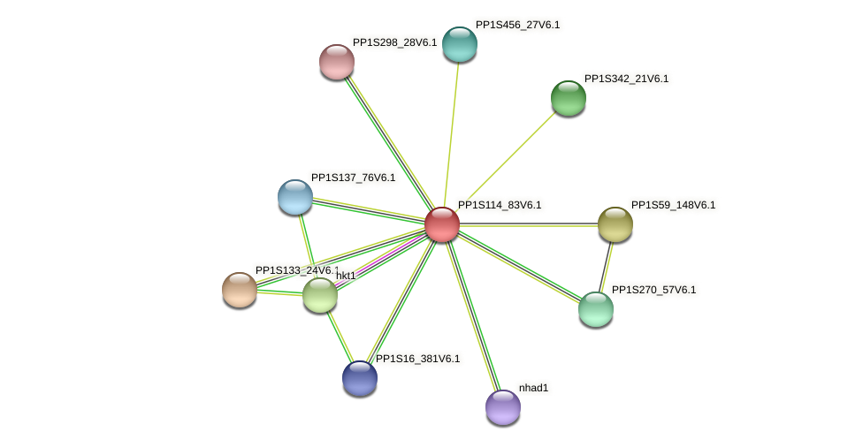 PP1S114_83V6.1 protein (Physcomitrella patens) - STRING interaction network