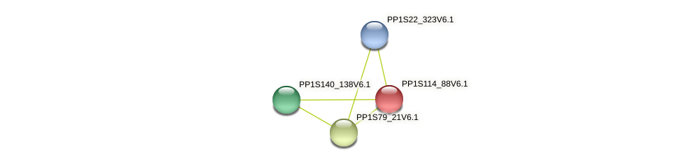 PP1S114_88V6.1 protein (Physcomitrella patens) - STRING interaction network