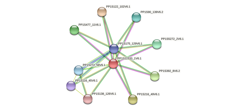 PP1S11533_1V6.1 protein (Physcomitrella patens) - STRING interaction network