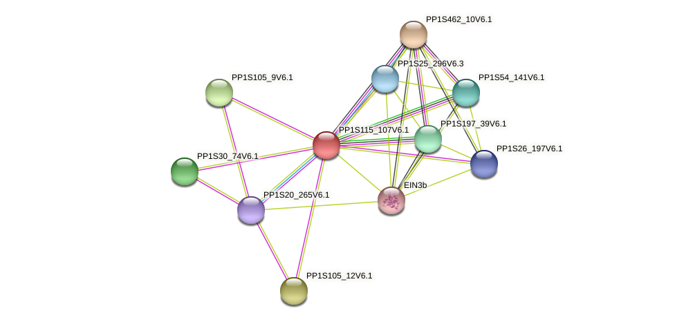 PP1S115_107V6.1 protein (Physcomitrella patens) - STRING interaction network