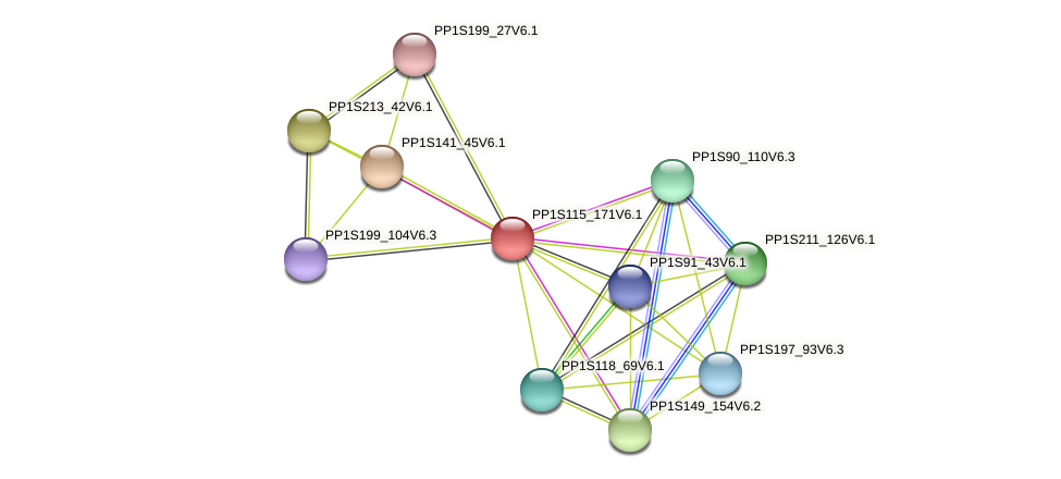 PP1S115_171V6.1 protein (Physcomitrella patens) - STRING interaction network
