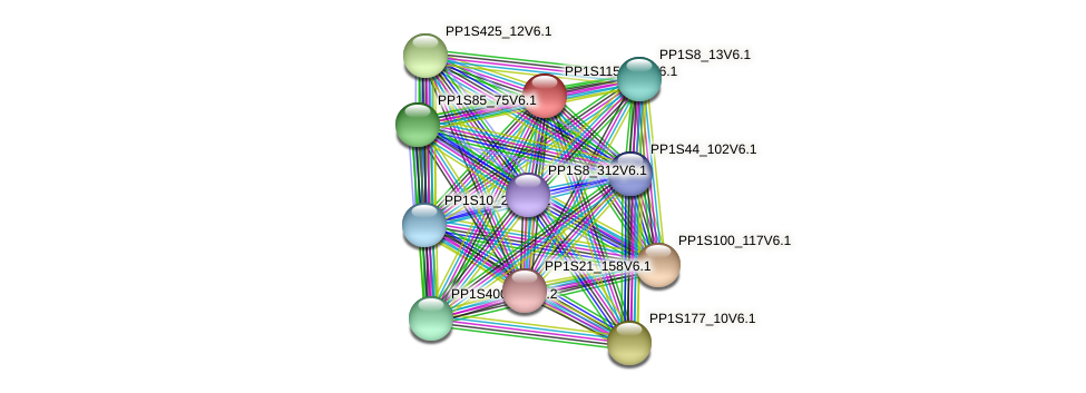 PP1S115_183V6.1 protein (Physcomitrella patens) - STRING interaction network
