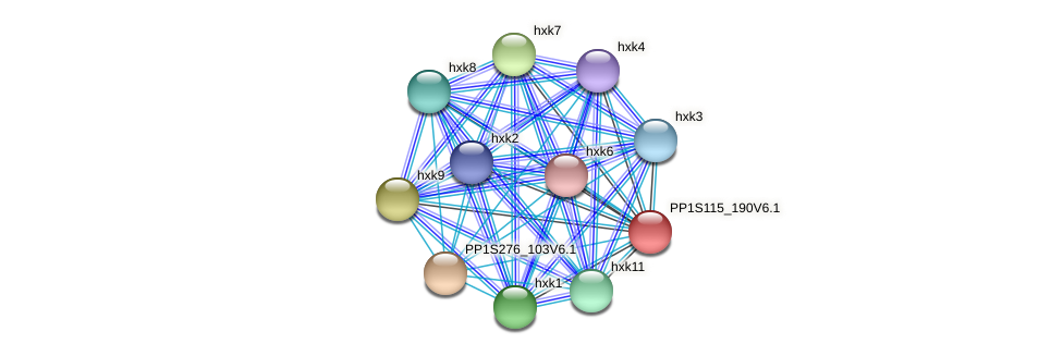 PP1S115_190V6.1 protein (Physcomitrella patens) - STRING interaction network