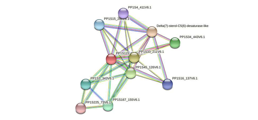 PP1S115_193V6.1 protein (Physcomitrella patens) - STRING interaction network