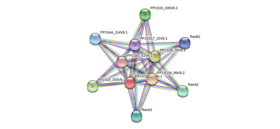 PP1S115_20V6.1 protein (Physcomitrella patens) - STRING interaction network