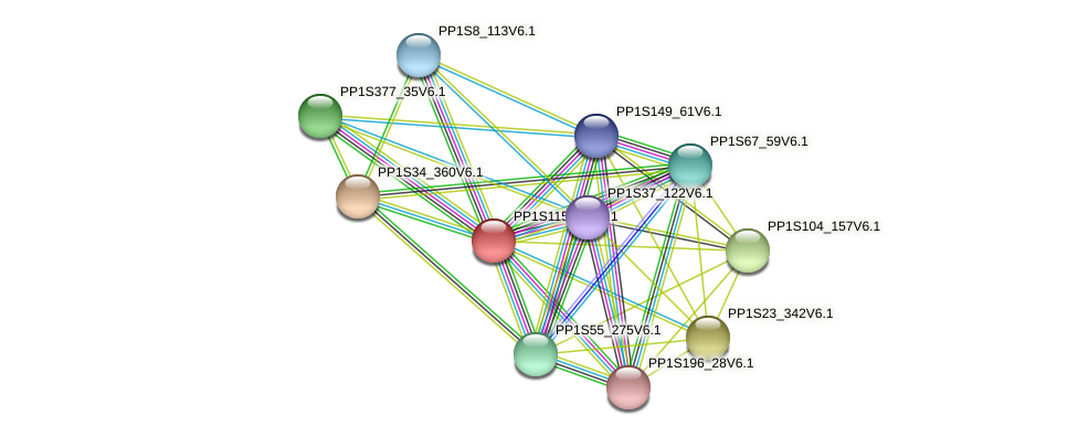 PP1S115_21V6.1 protein (Physcomitrella patens) - STRING interaction network
