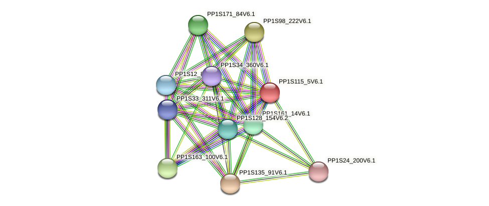 PP1S115_5V6.1 protein (Physcomitrella patens) - STRING interaction network