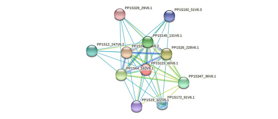 PP1S115_60V6.1 protein (Physcomitrella patens) - STRING interaction network