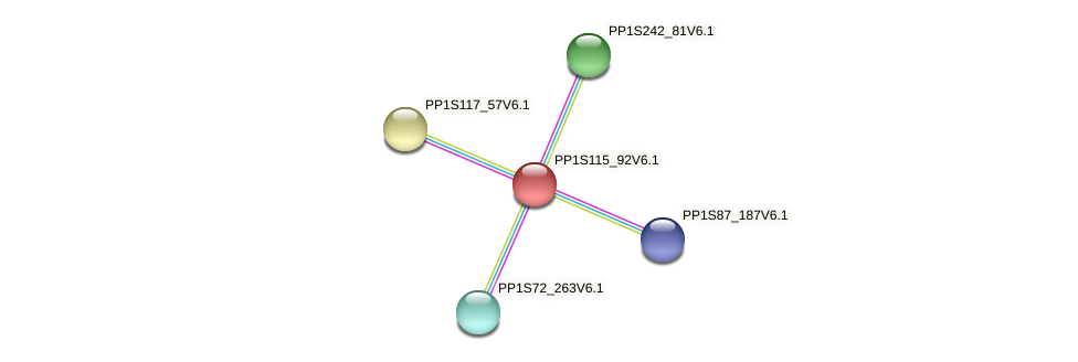 PP1S115_92V6.1 protein (Physcomitrella patens) - STRING interaction network