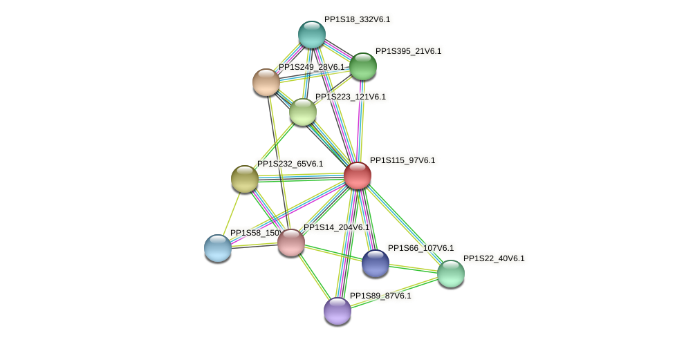 PP1S115_97V6.1 protein (Physcomitrella patens) - STRING interaction network
