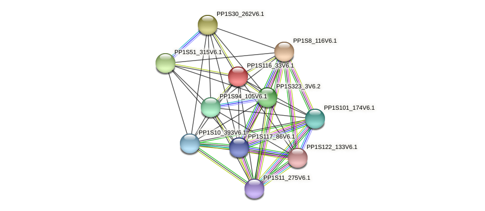 PP1S116_33V6.1 protein (Physcomitrella patens) - STRING interaction network