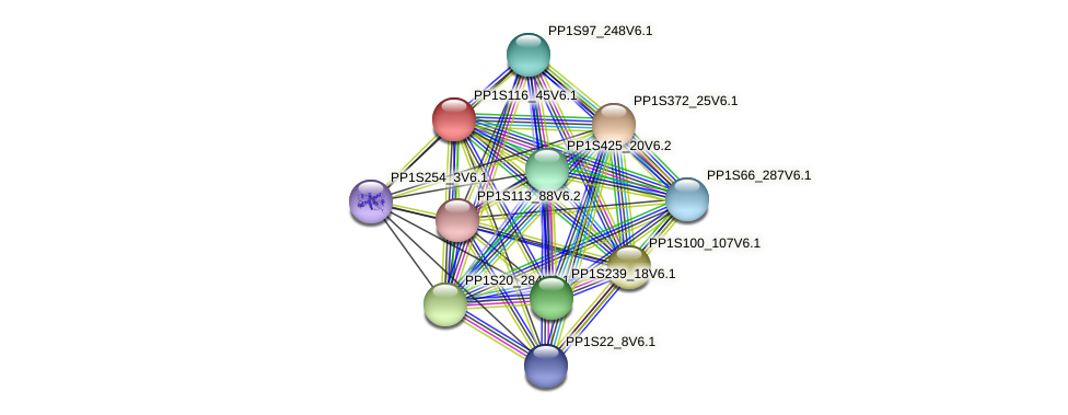 PP1S116_45V6.1 protein (Physcomitrella patens) - STRING interaction network