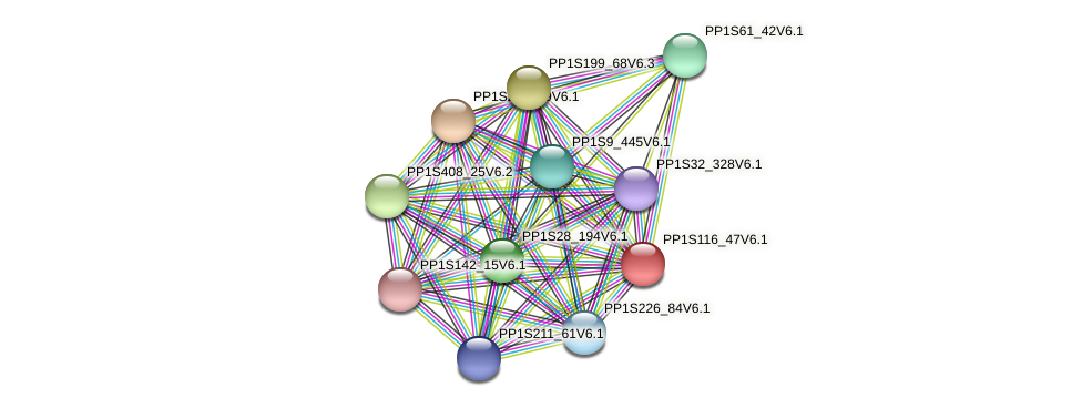 PP1S116_47V6.1 protein (Physcomitrella patens) - STRING interaction network