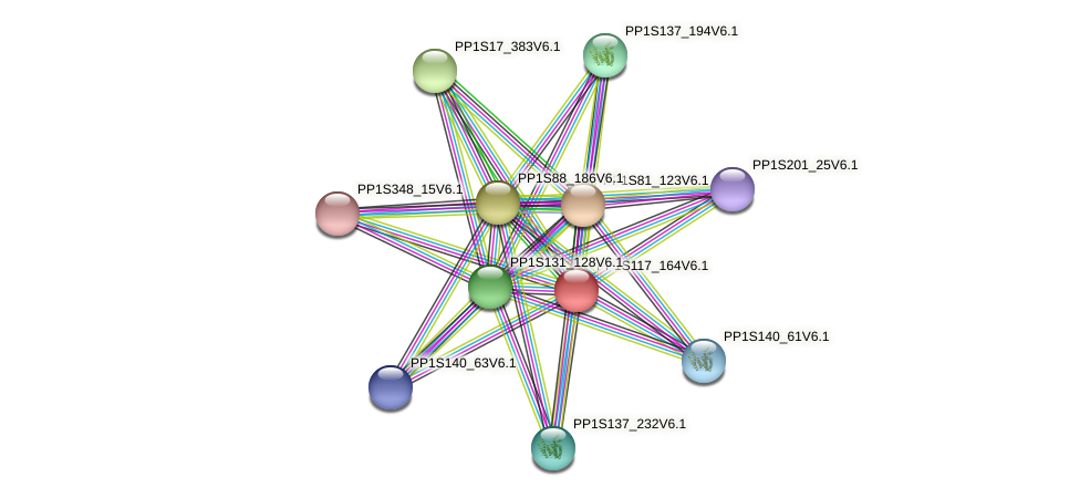 PP1S117_164V6.1 protein (Physcomitrella patens) - STRING interaction network