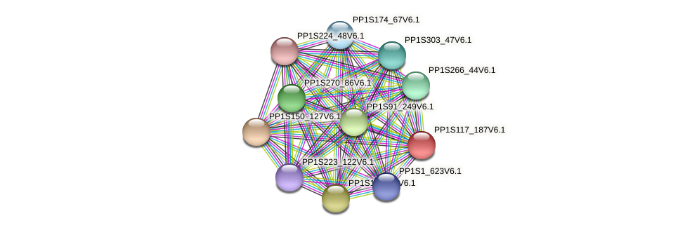 PP1S117_187V6.1 protein (Physcomitrella patens) - STRING interaction network