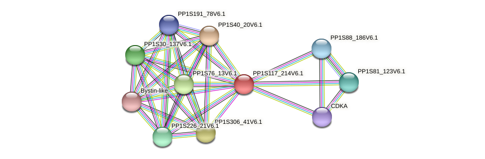PP1S117_214V6.1 protein (Physcomitrella patens) - STRING interaction network