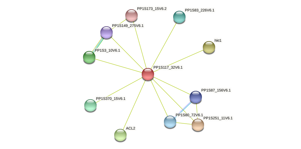 PP1S117_32V6.1 protein (Physcomitrella patens) - STRING interaction network