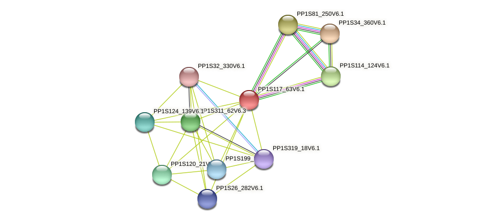 PP1S117_63V6.1 protein (Physcomitrella patens) - STRING interaction network