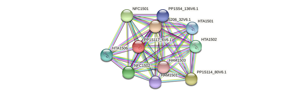 PP1S117_6V6.1 protein (Physcomitrella patens) - STRING interaction network