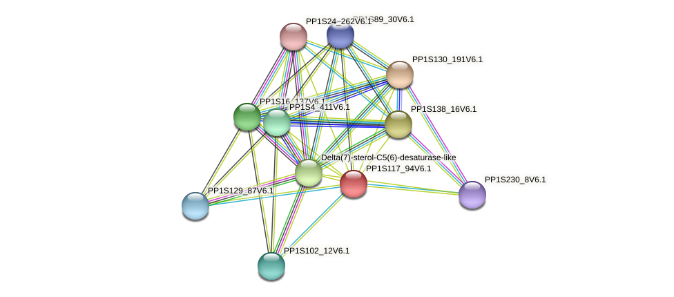 PP1S117_94V6.1 protein (Physcomitrella patens) - STRING interaction network